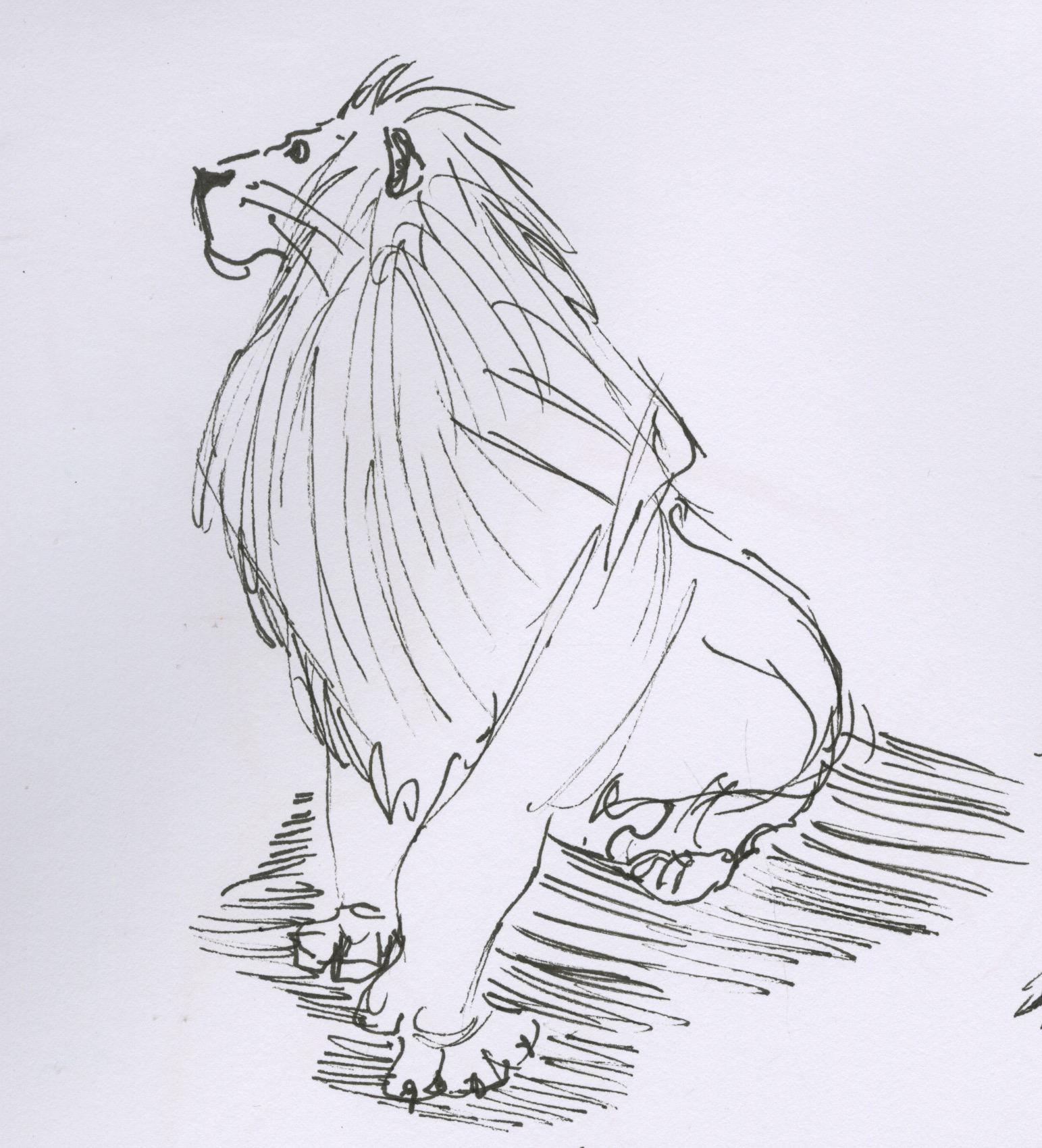 sketch26.jpg