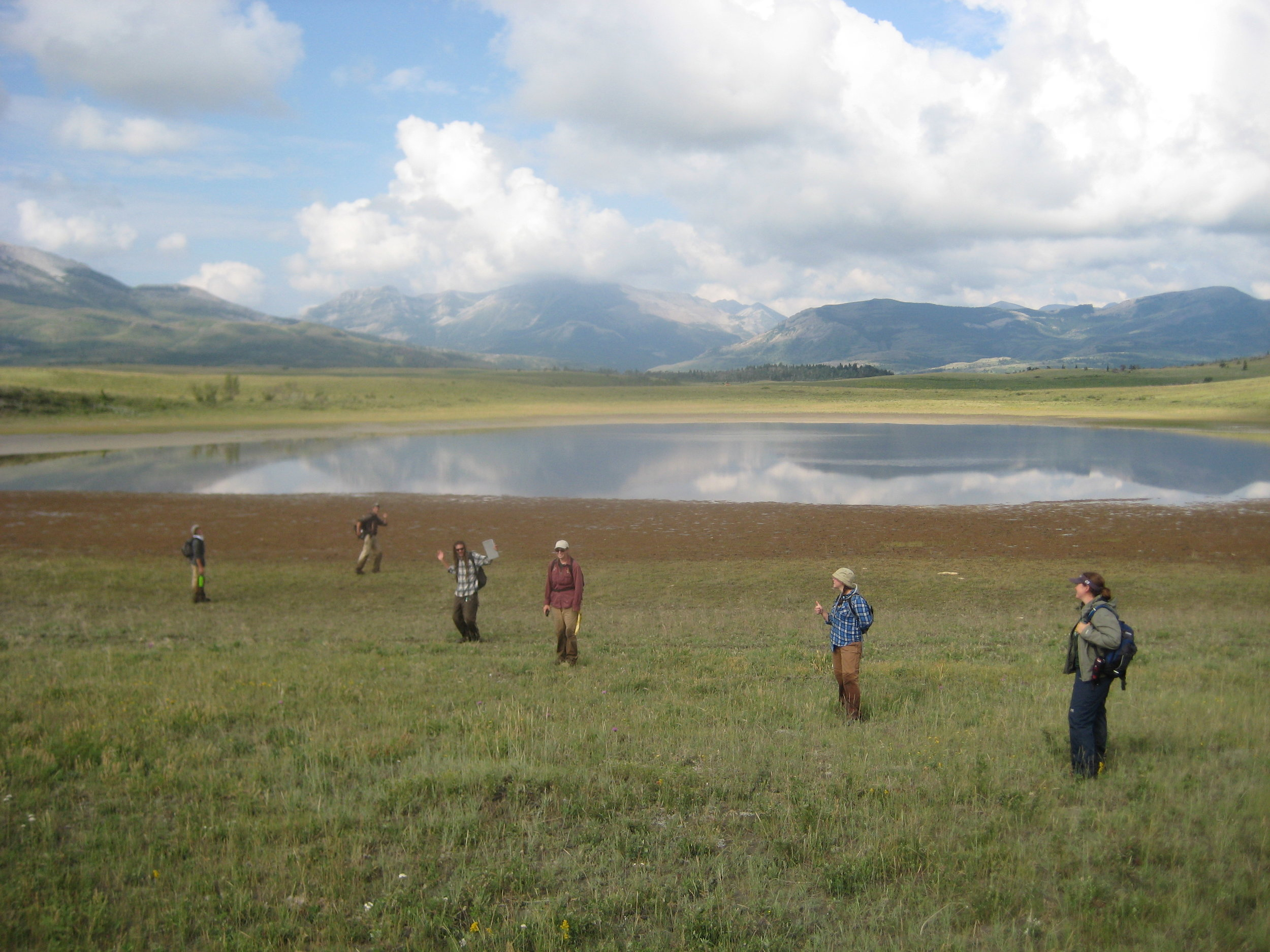2009 Birch Creek weed mapping