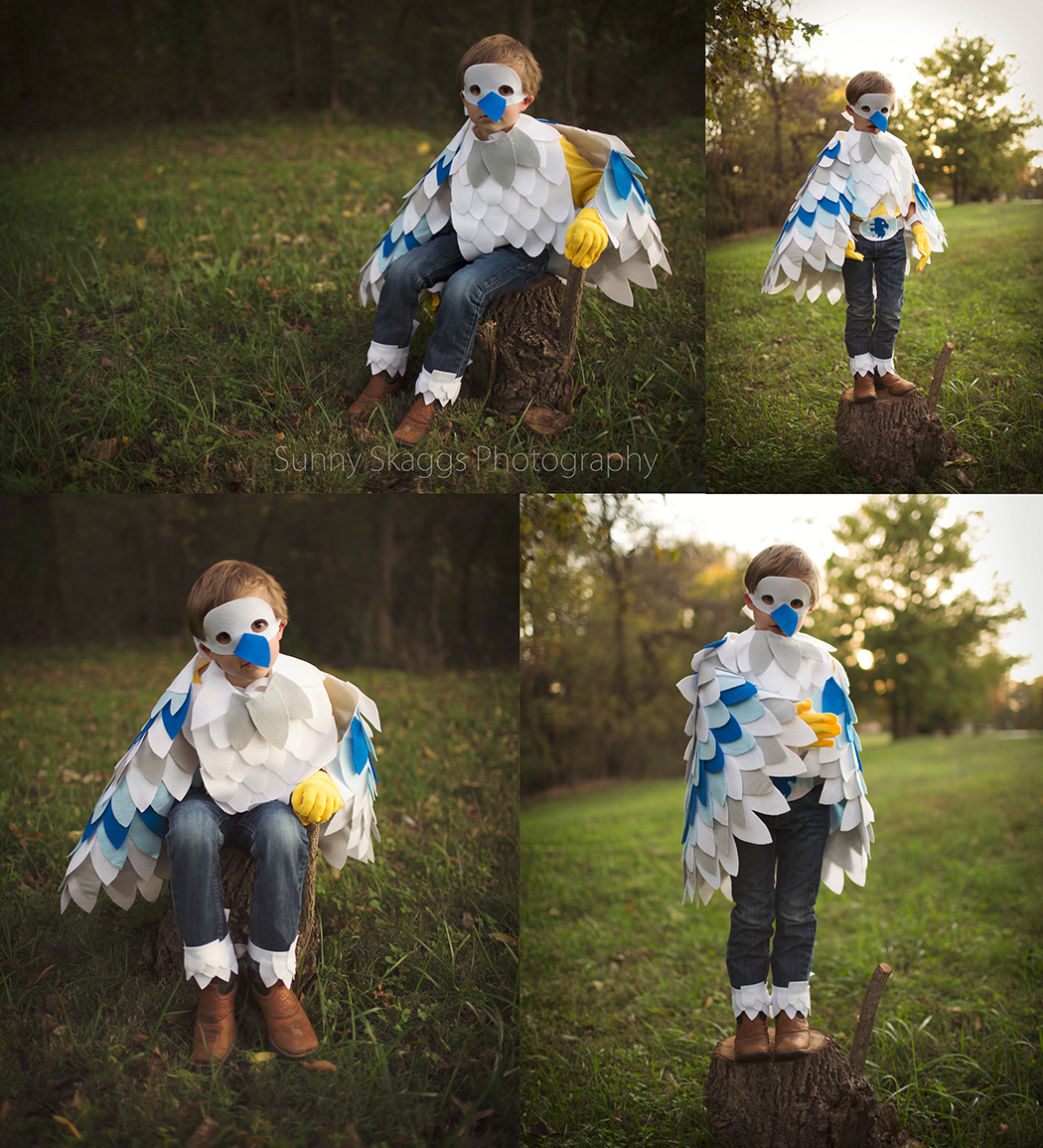 {Eagle Man age 5} Cosplay Portrait taken in Northwest Arkansas by Sunny Skaggs Photography