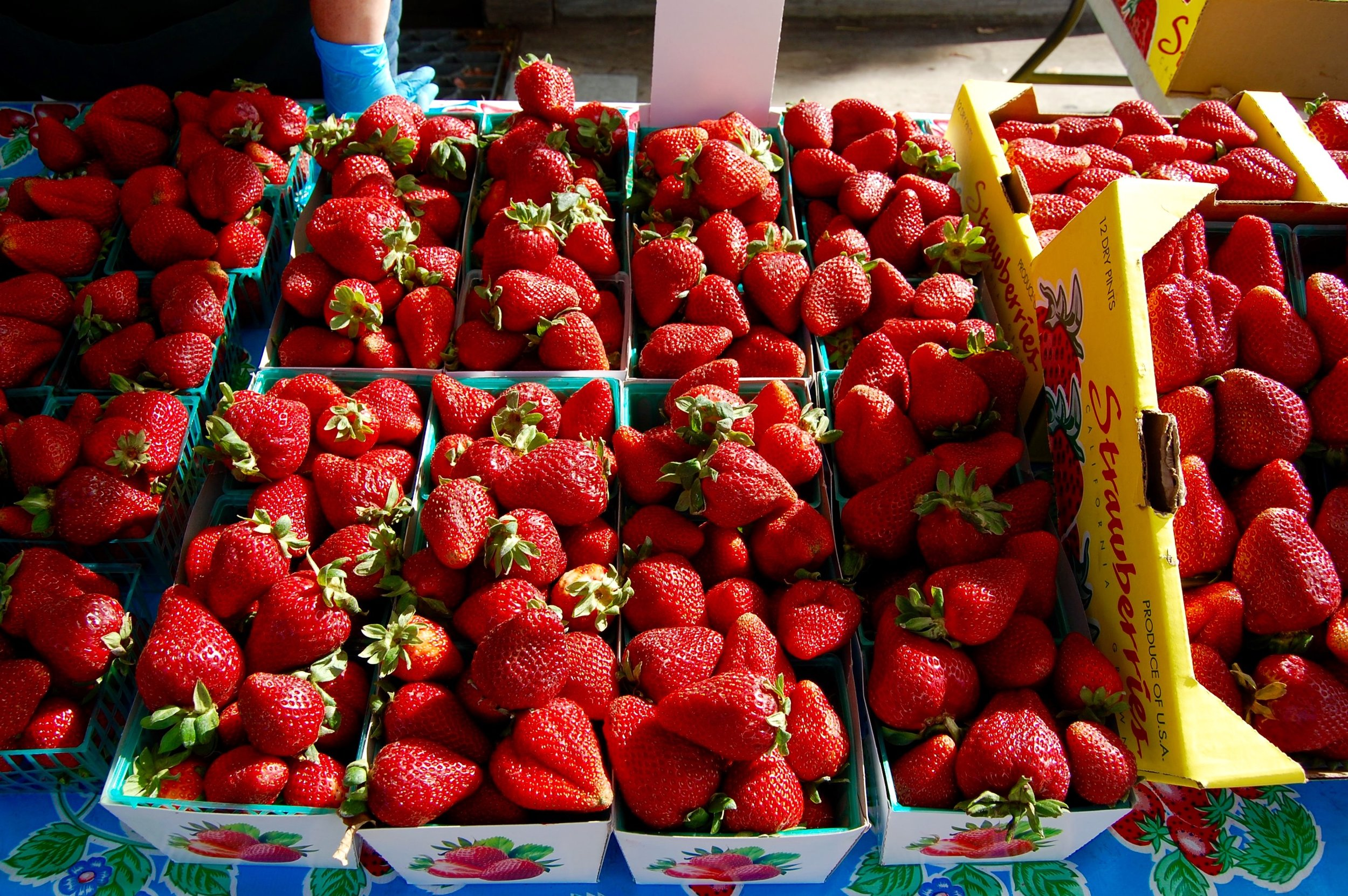 The Best Strawberries Ever, at the Saratoga Village Farmer's Market on Wednesday afternoons.