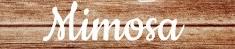 rustic_country_vintage_wood_lights_mimosa_photo_print-r40259b69f5ca417b8a83457cc854aebe_fkn2_8byvr_307.jpg