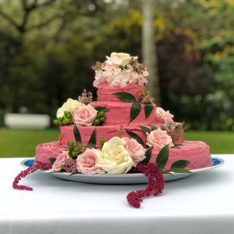 Rose Flavored Cake w. Cream Cheese 'Beet' Icing