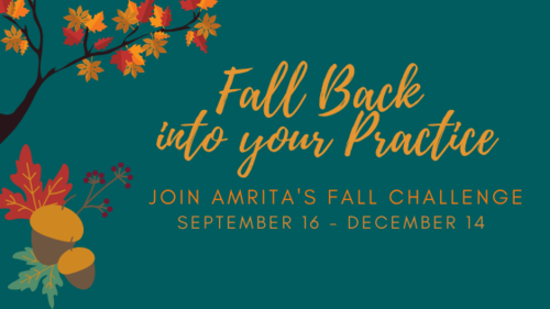 Fall Back into your Practice2-2.png