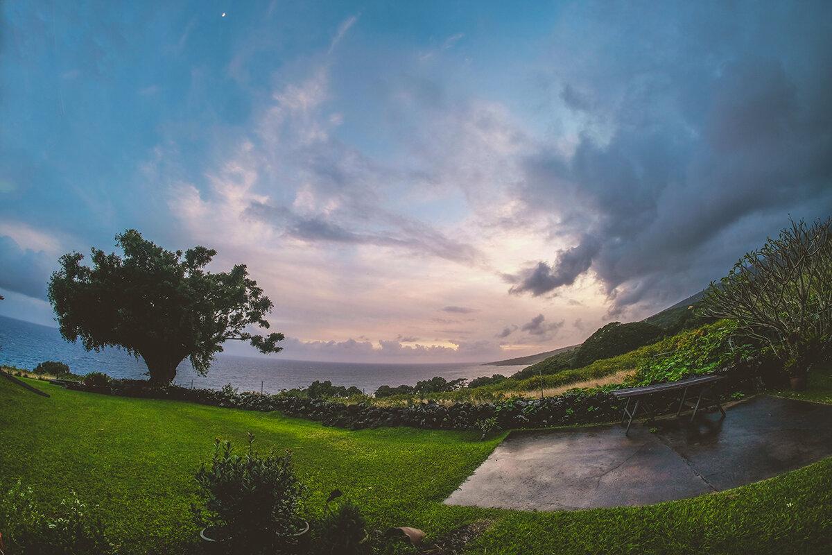 hawaii backyard smalled.jpg