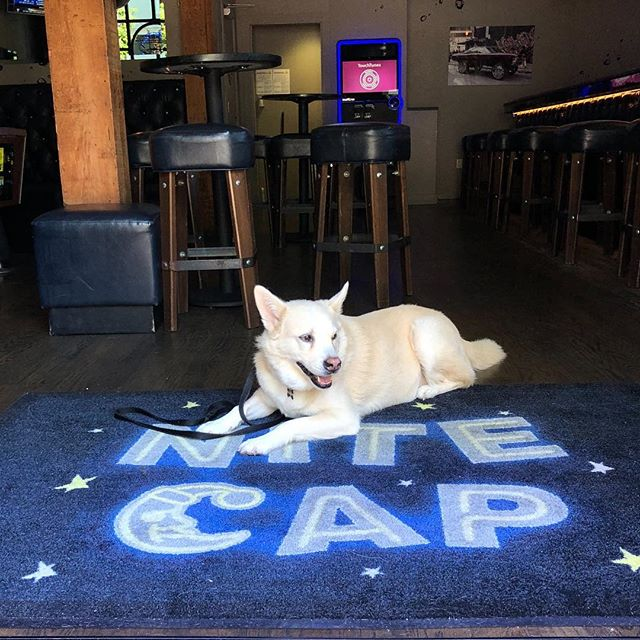 the new bouncer at nite cap smells your asshole to see if you're 21. p.s. it's not drake