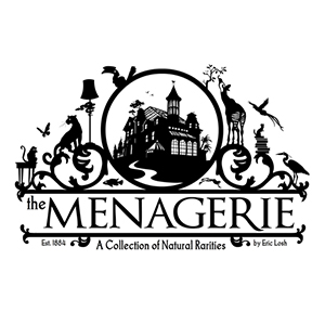 The Menagerie    proposed picture book, MFA thesis, 2008
