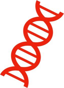 RNA.jpg