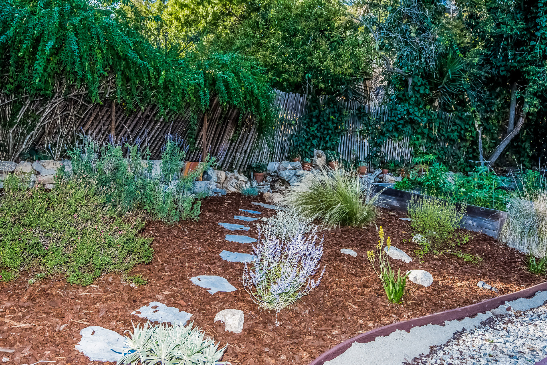 032-Backyard__upper_garden-2907672-medium.jpg