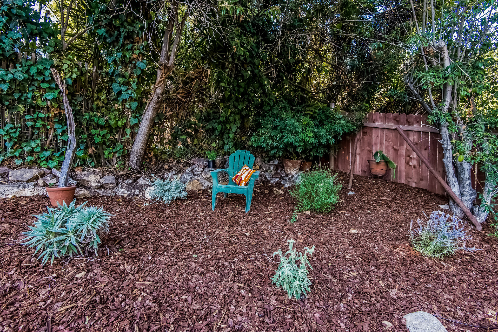 034-Upper_garden_in_backyard-2907683-medium.jpg