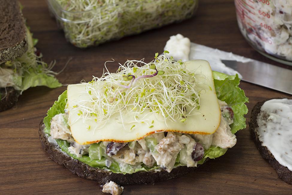 chicken-salad-sandwich.png