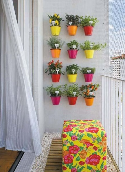 15 Popular Herbs To Grow On Your Apartment Balcony Anns Liee