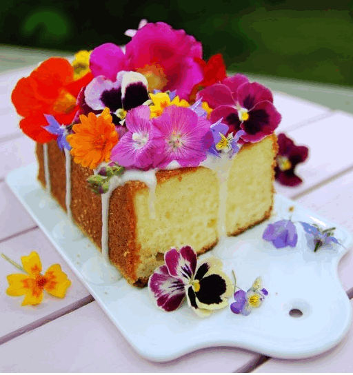 lemon-cake-with-edible-flowers-2015-08-29_1323.png