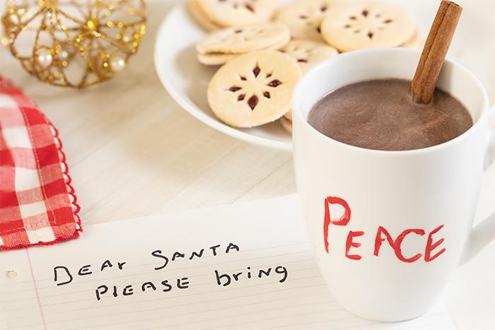Dear Santa Christmas 2018-1V2Size-6933.jpg