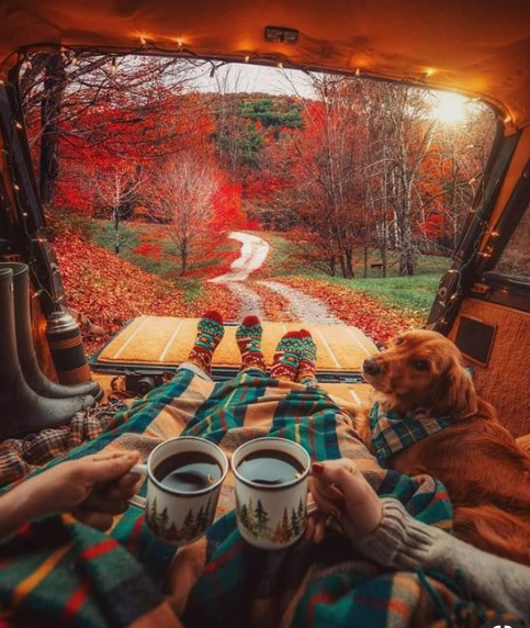 Fall picnic from a hatch-back car