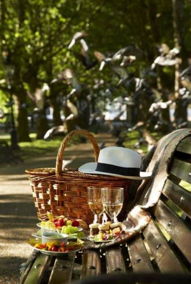 picnic on park bench   source