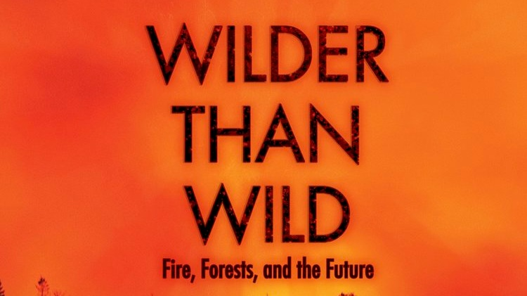 Wilder than Wild  Available at:  www.wilderthanwildfilm.org