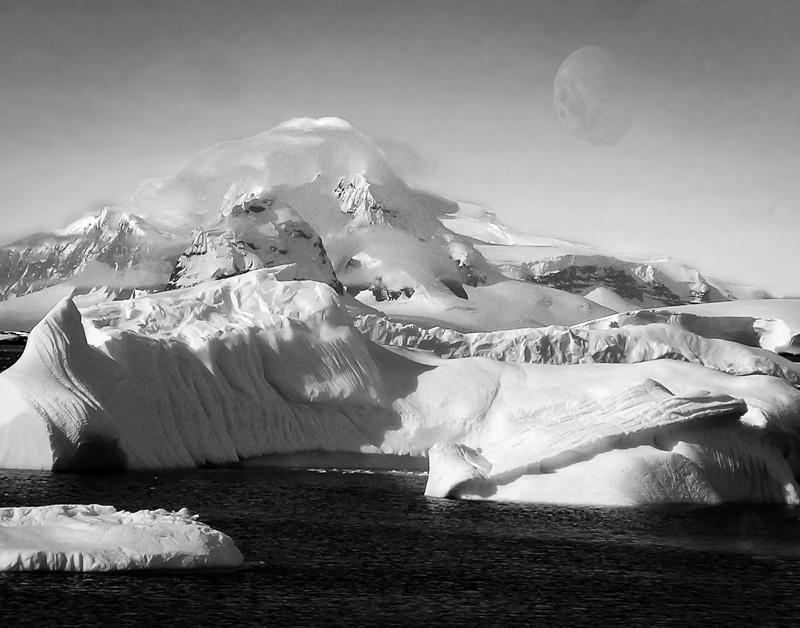 Antarctica in Sumner
