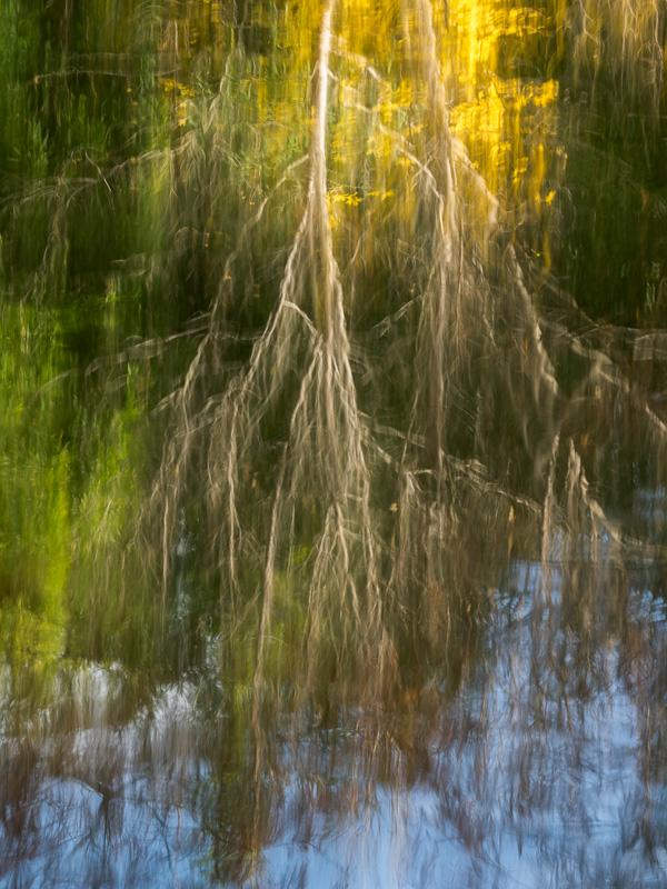 Reflection Impression