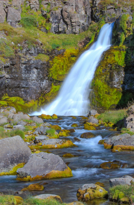 Waterfall and Mosses