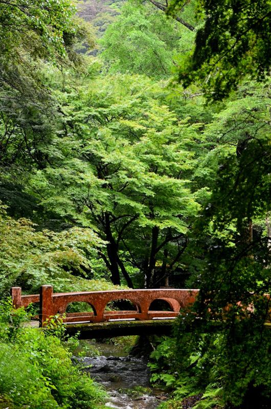 Izumo walking bridge