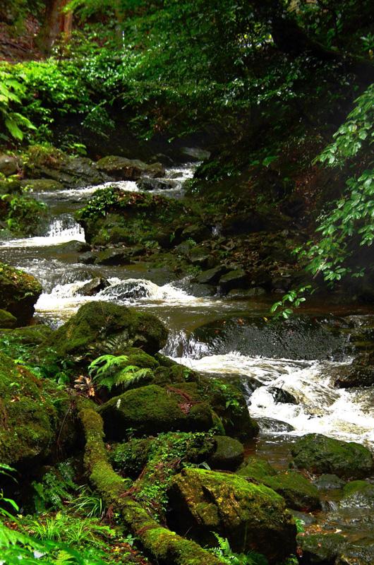 Izumo mountain stream