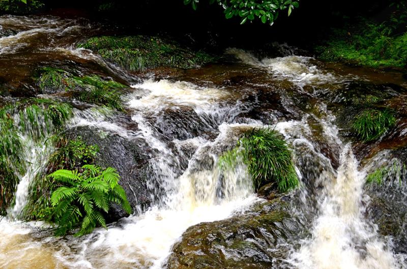 Rushing stream in Izumo