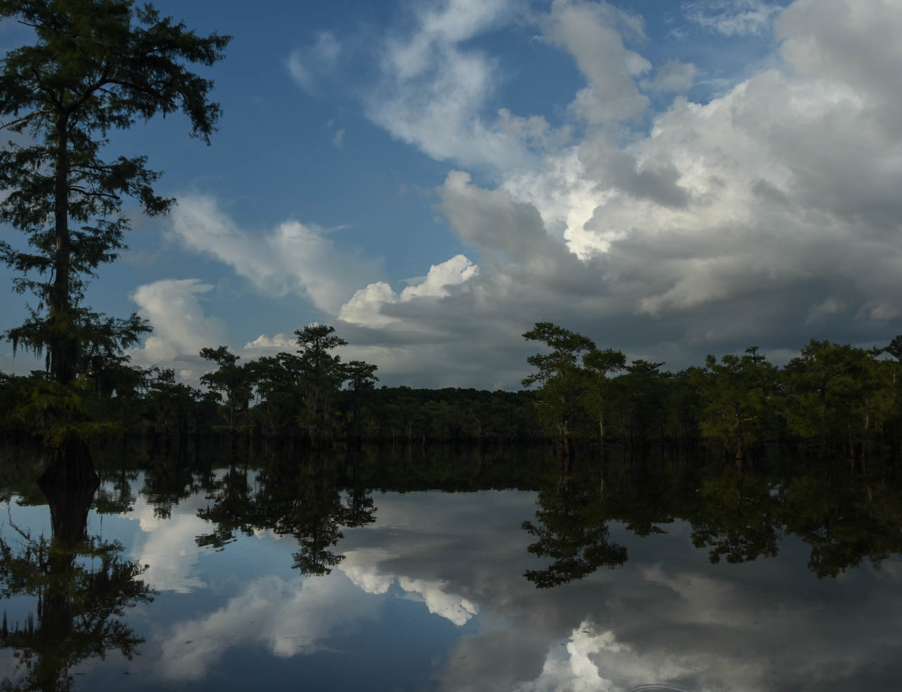 01.sjs.Caddo Lake.jpg.jpg