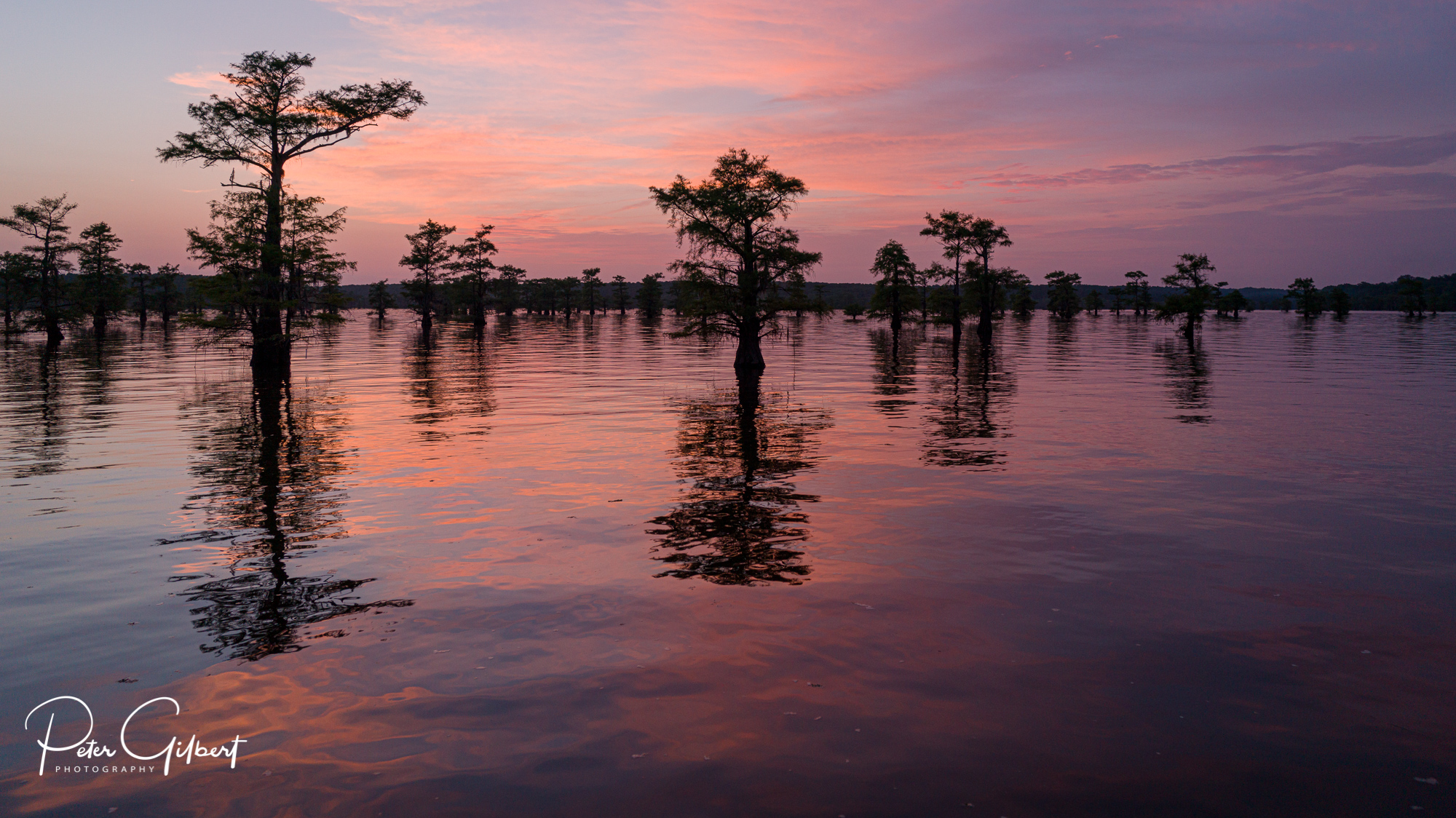 03.pg.Caddo_Lake-394.jpg