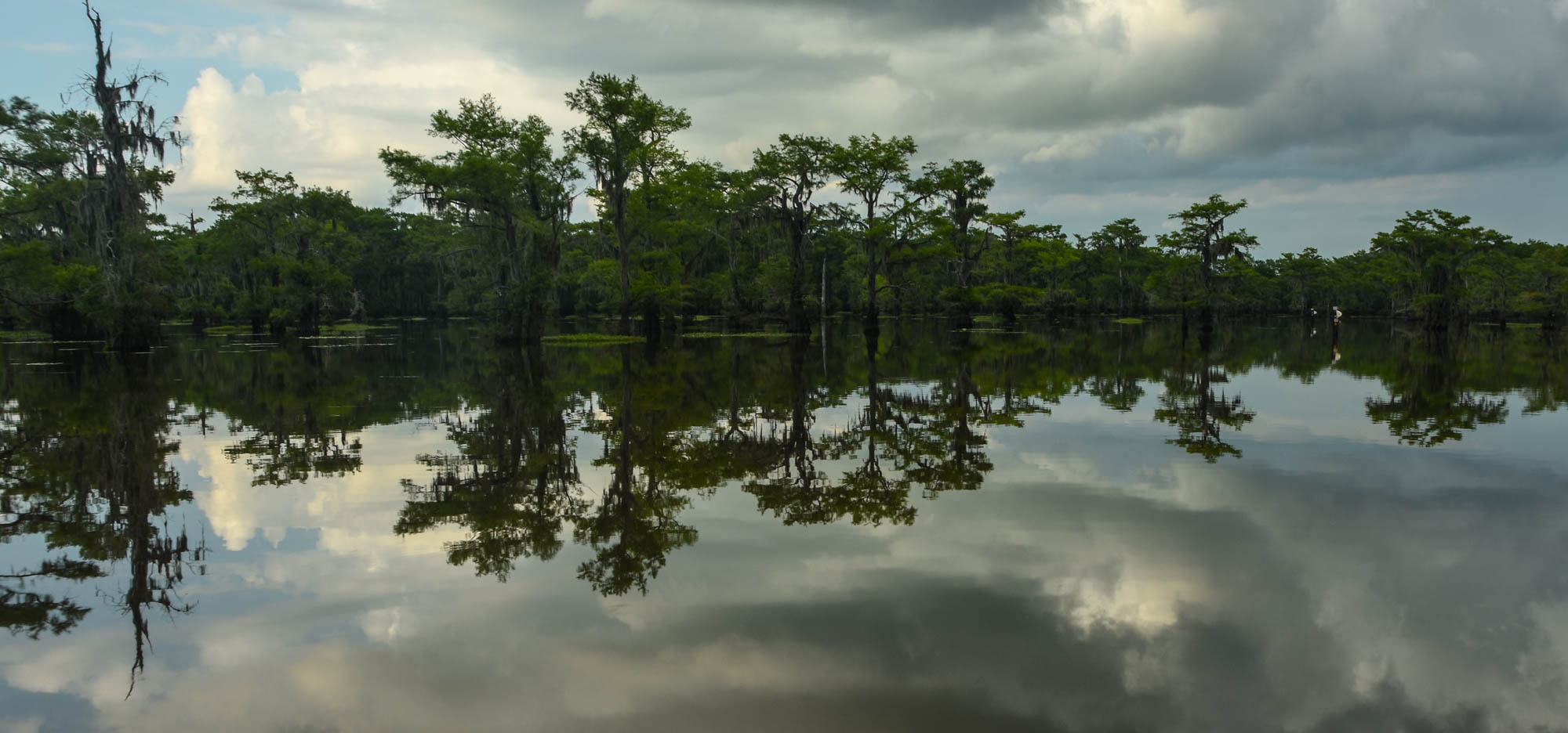 03.sjs.Caddo Lake.jpg.jpg