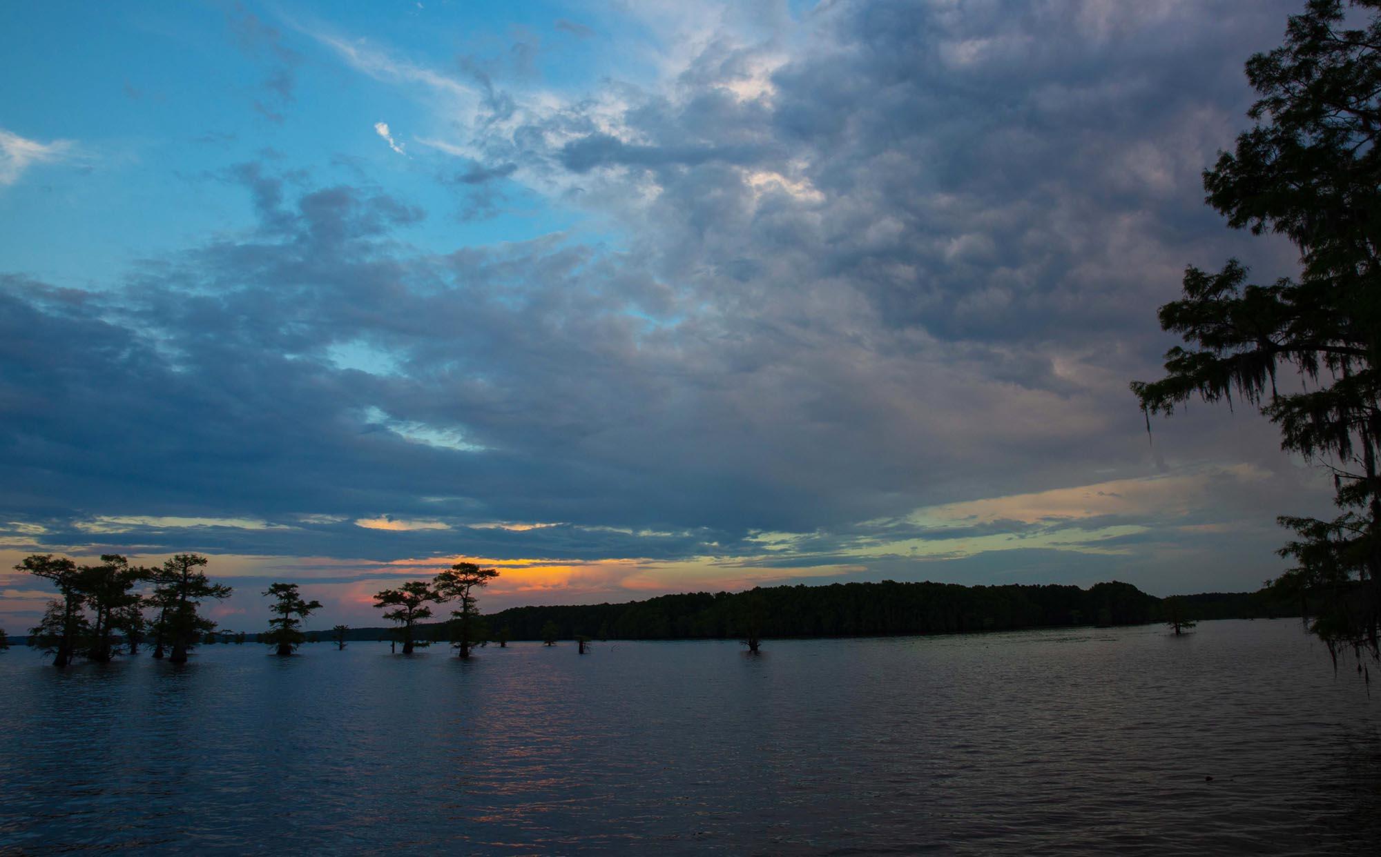 Caddo Lake_dn1.jpg
