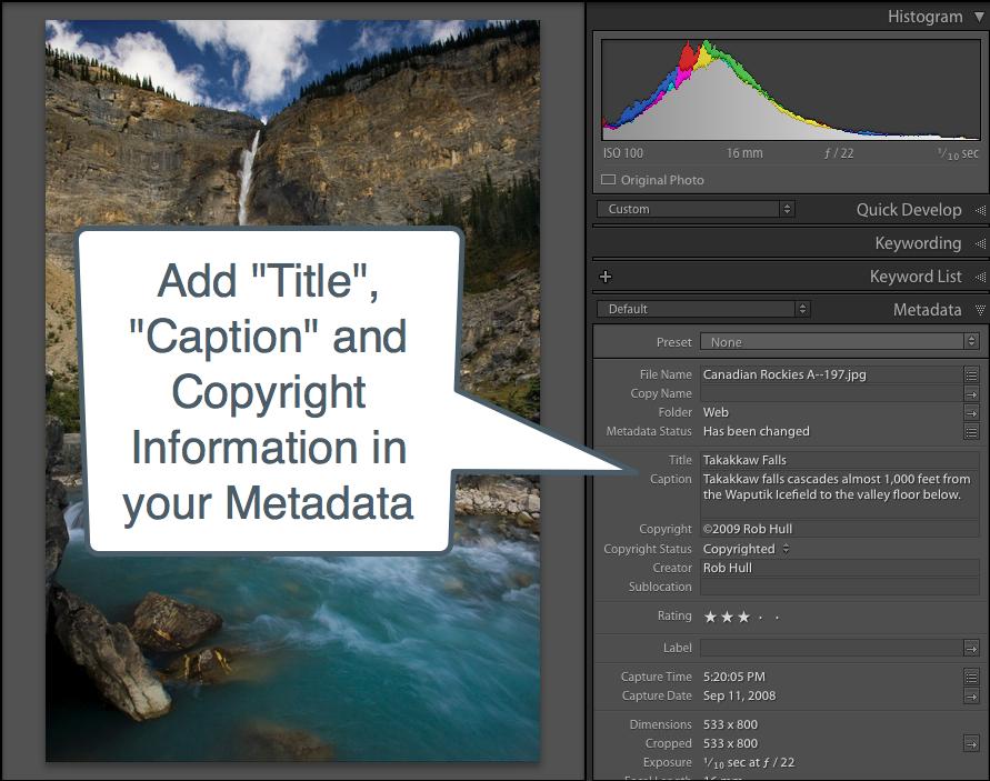 Lightroom Metadata.png