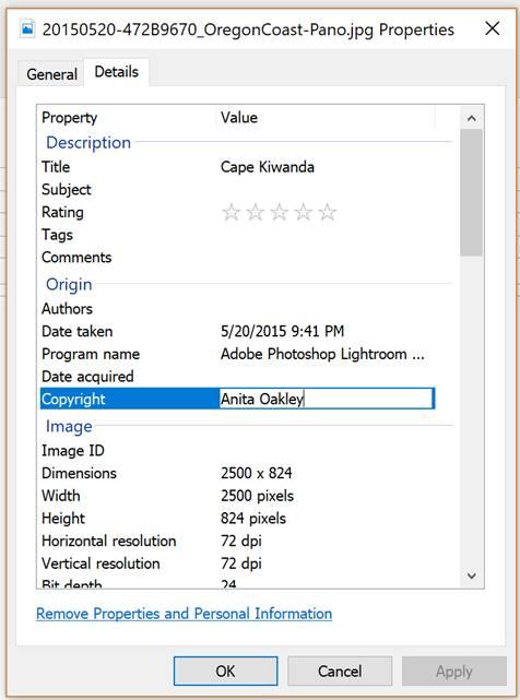 Metadata Windows 2.jpg