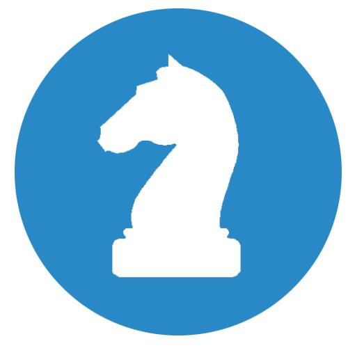 strategy icon final.jpg