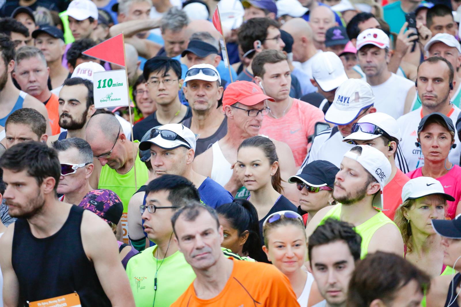 SMH Half Marathon --« Salty Dingo 2017-29489.jpg