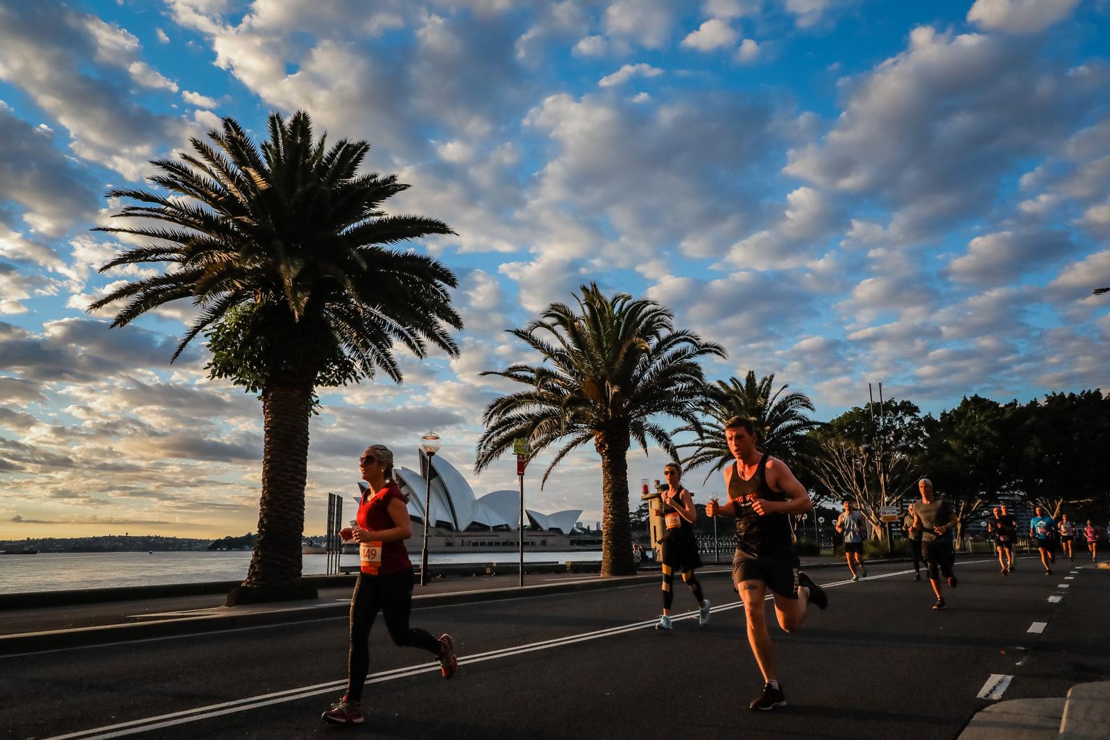 SMH Half Marathon --« Salty Dingo-0090.jpg