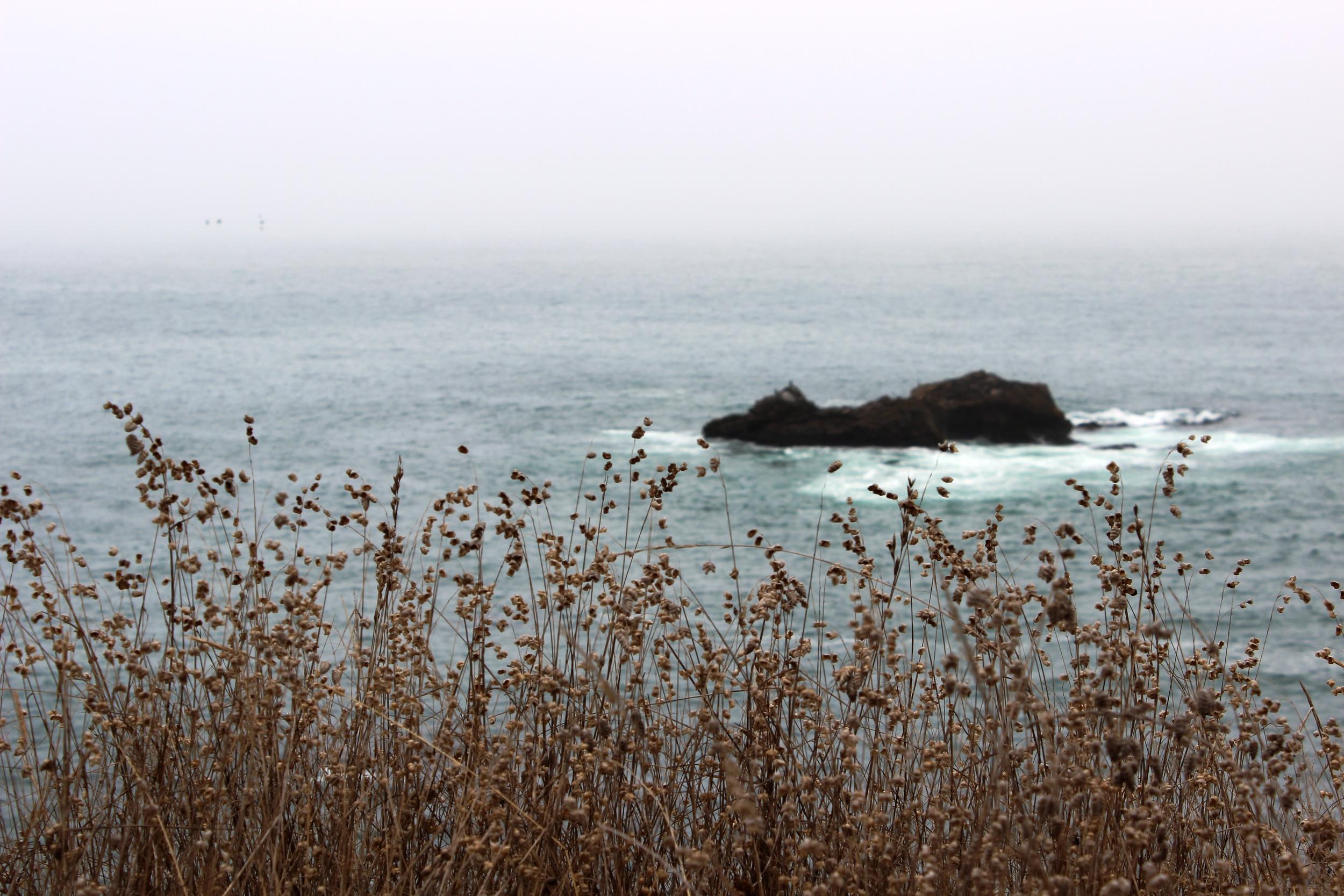 San Francisco, Napa, Sonoma 640 - Copy