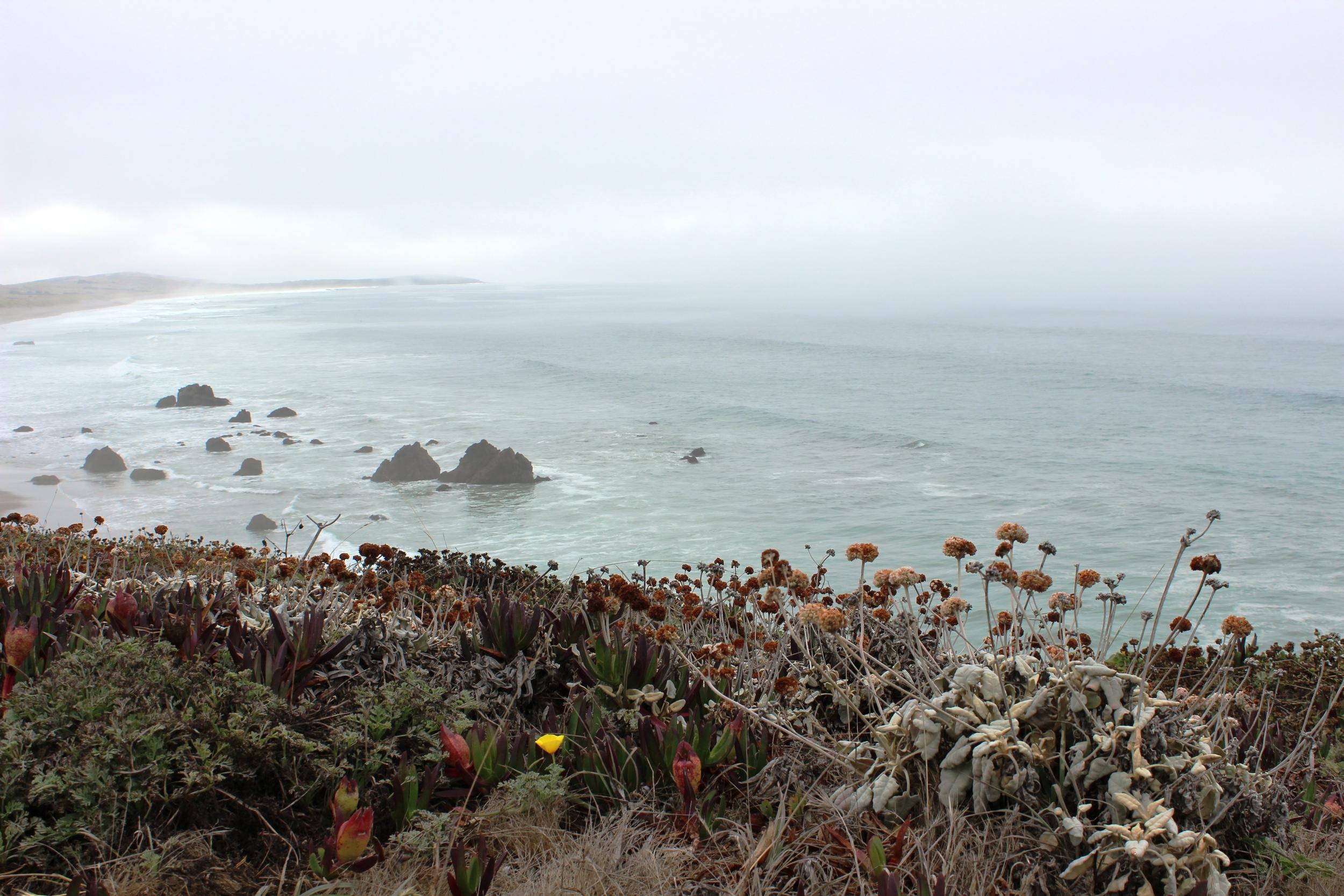 San Francisco, Napa, Sonoma 727 - Copy