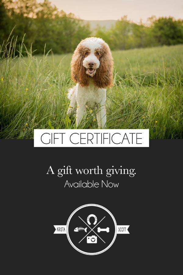 gift ad.jpg
