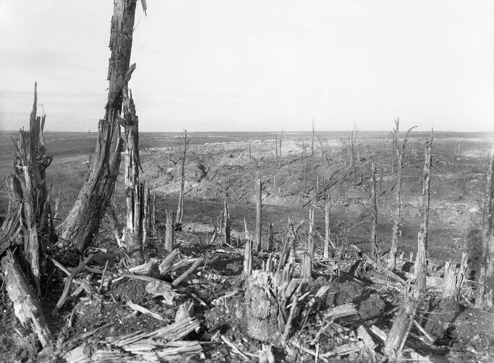 The battlefield at Beaumont Hamel.
