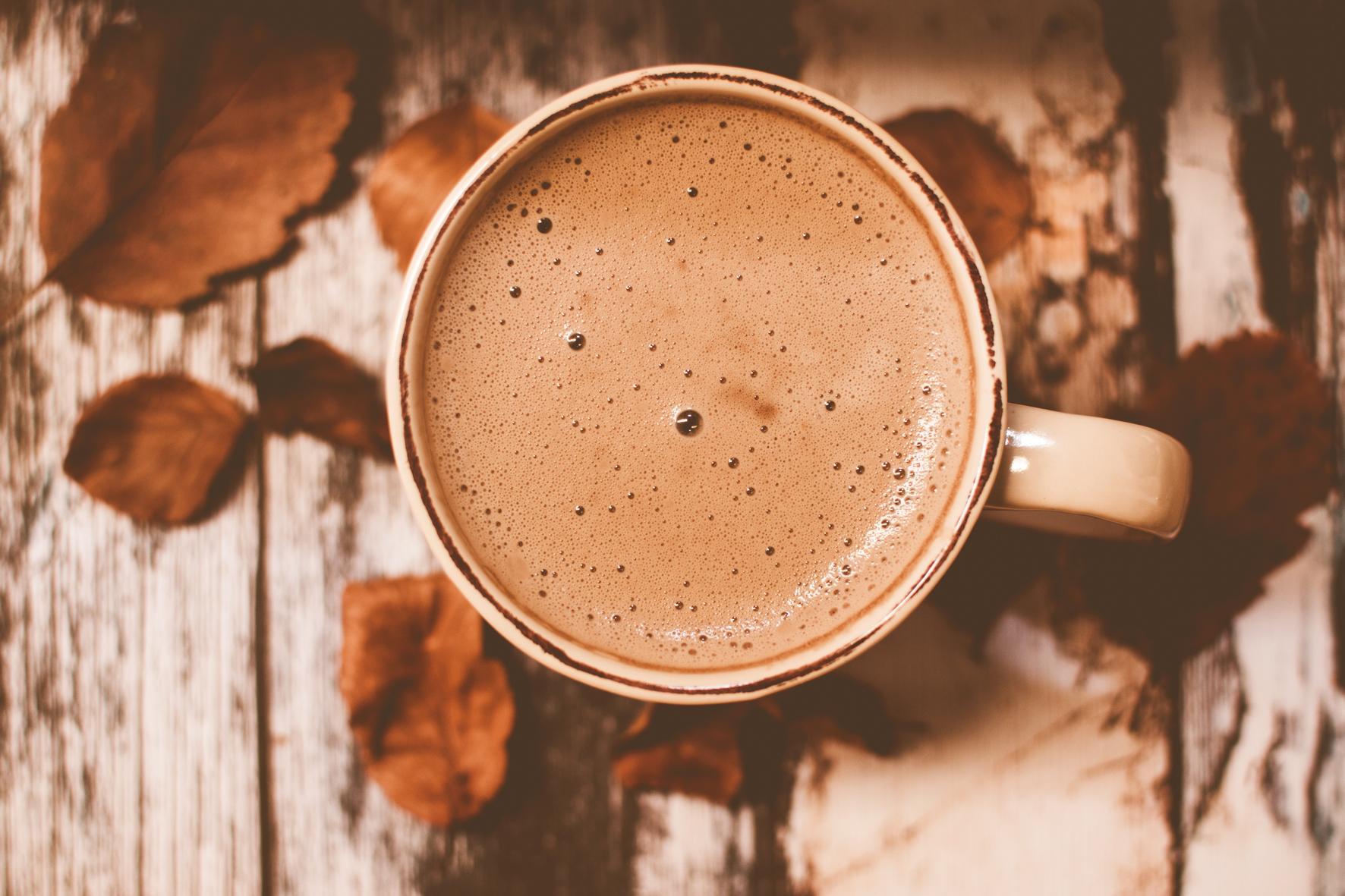 cacao 3.jpg