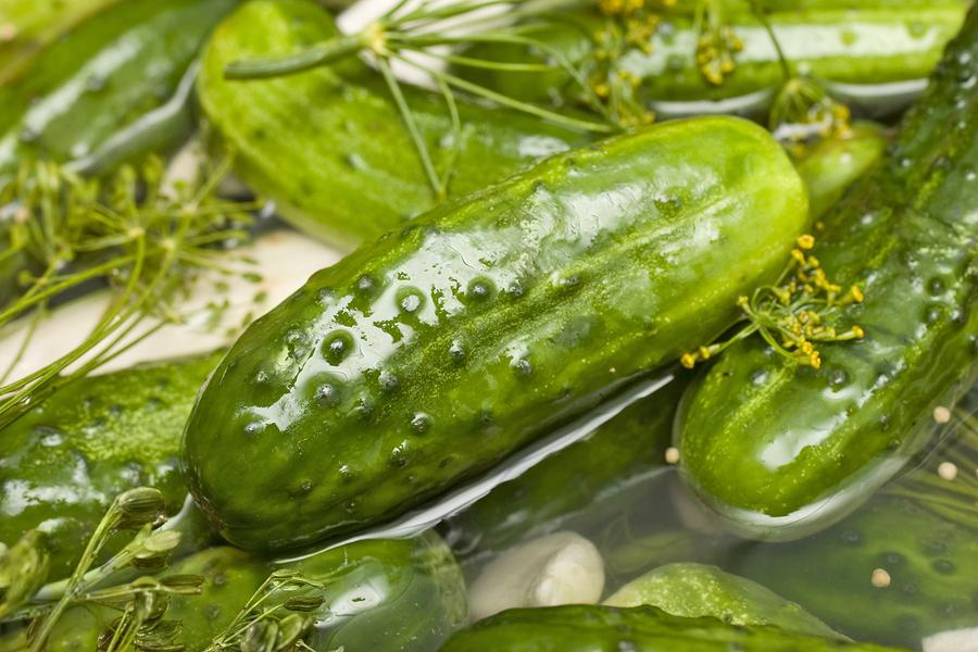 bigstock-Homemade-Fresh-Dill-Pickle-2817481.jpg