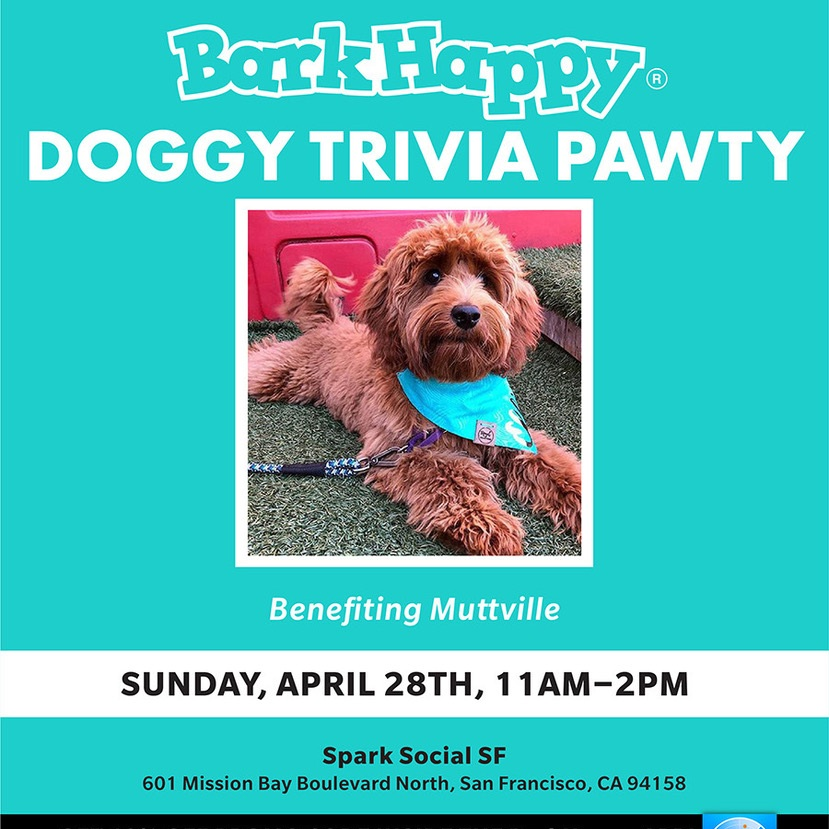 04APR19_SF_DoggyTriviaPawty (1).jpeg