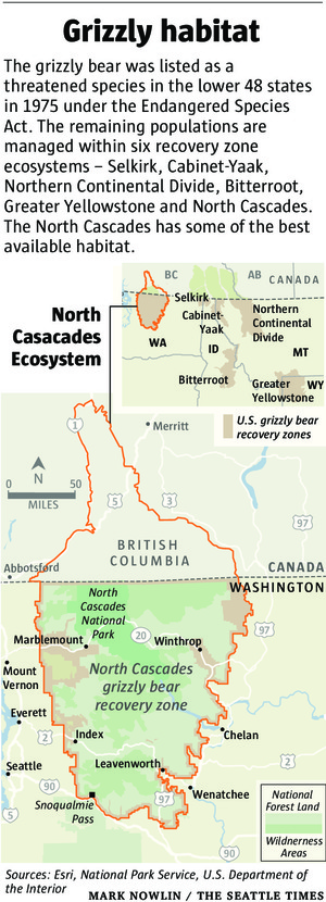 Grizzly Habitat in the North Cascades. Photo courtesy of the   Seattle Times  .