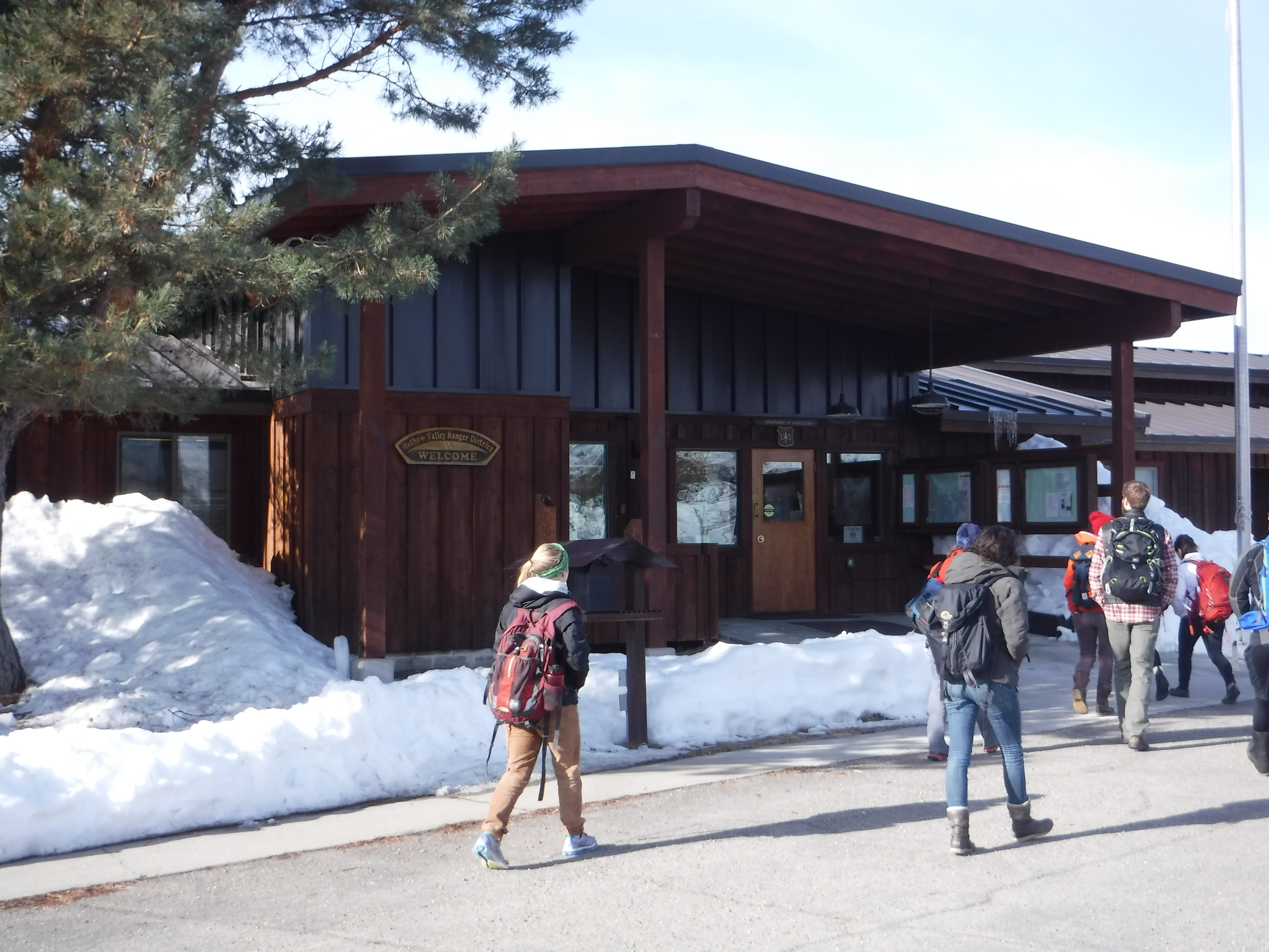 Stopping at the Methow Ranger District to learn about Wolverines.
