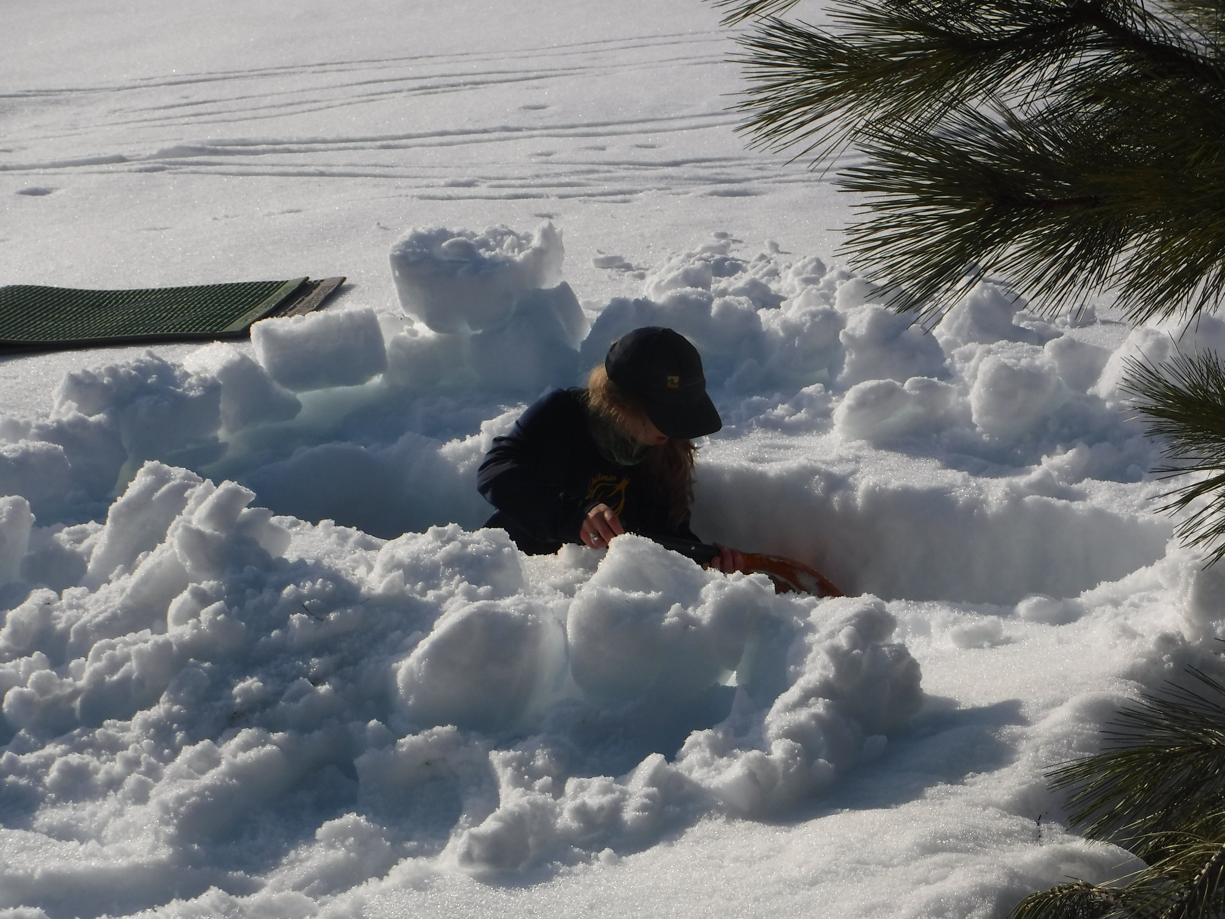 Emily digging a snow trench.