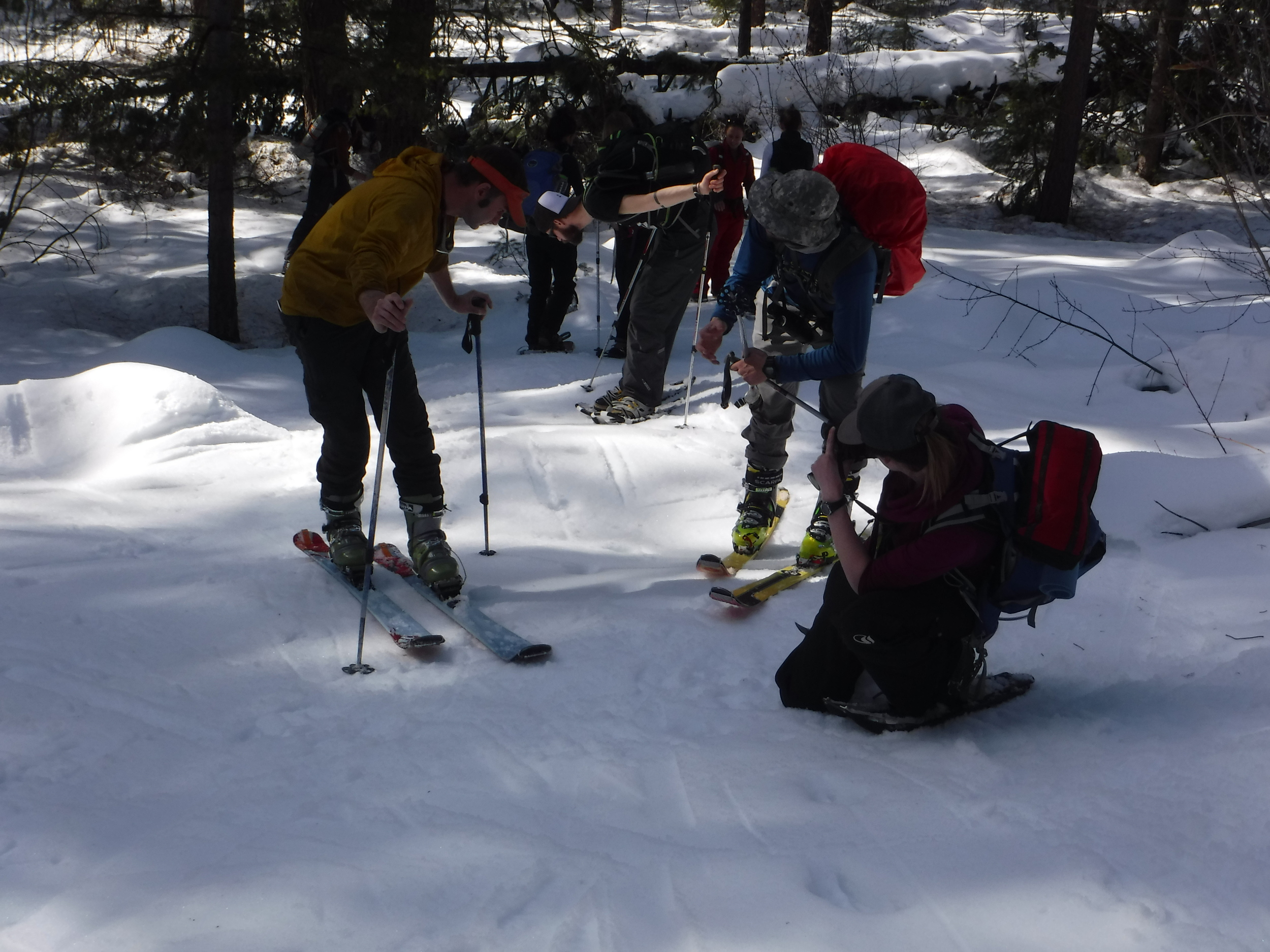 Using our tracking skills on the way to the snow tests.