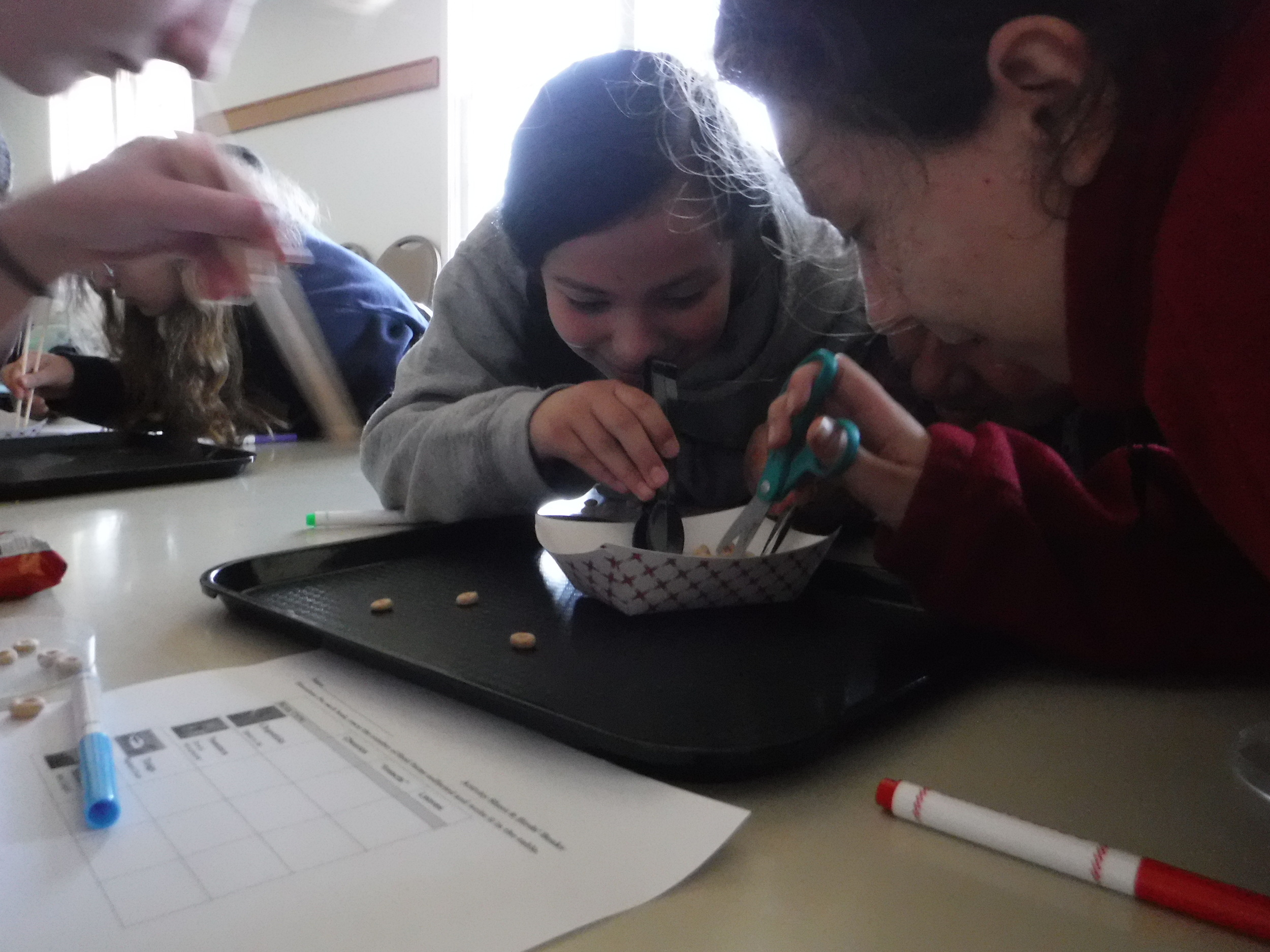 """Students using """"beaks"""" to understand different bird adaptations."""