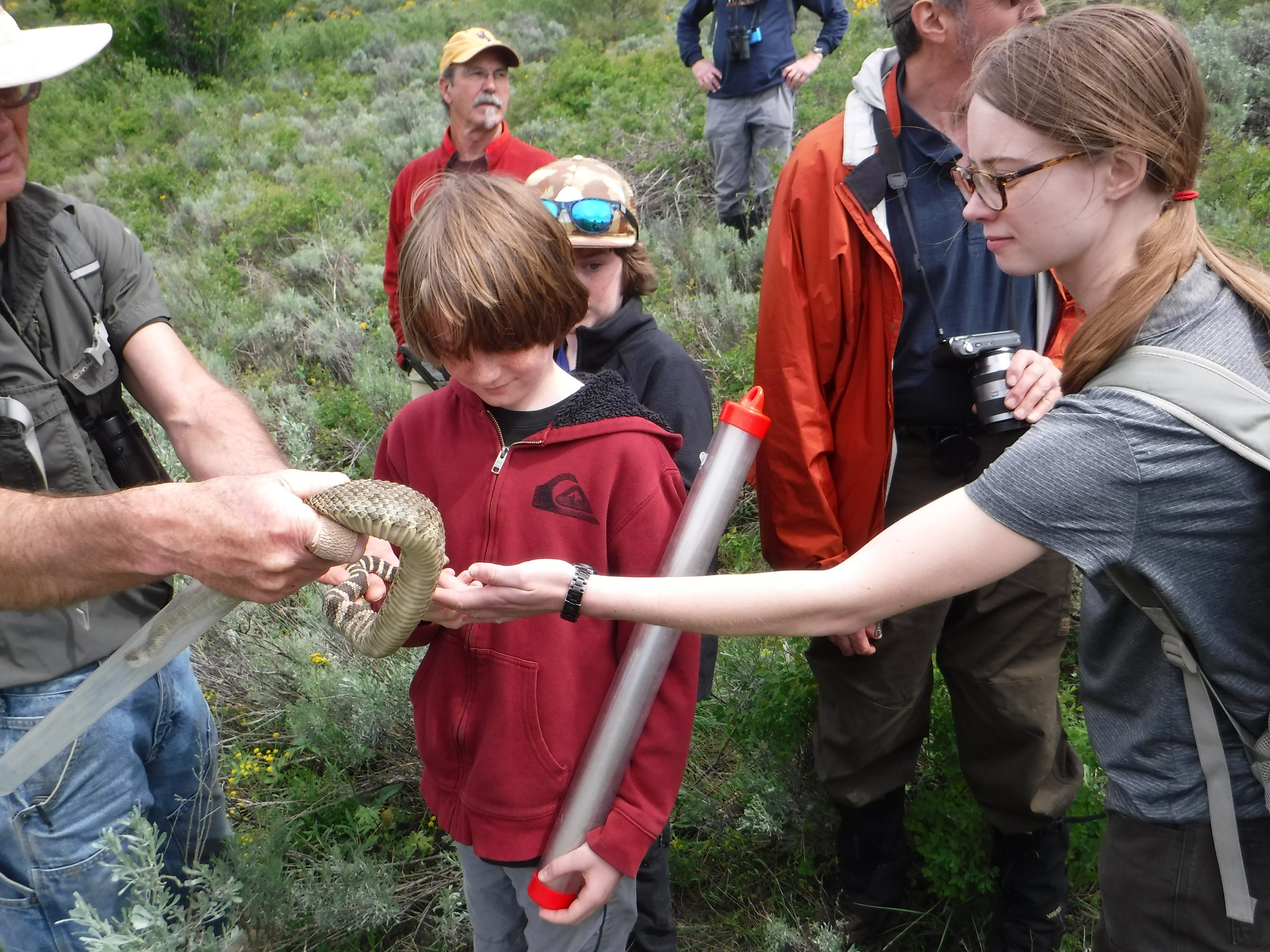Participants petting a rattle snake.