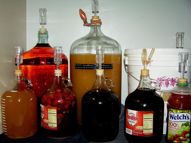 Home brewing kit (retrieved from Wikimedia commons)