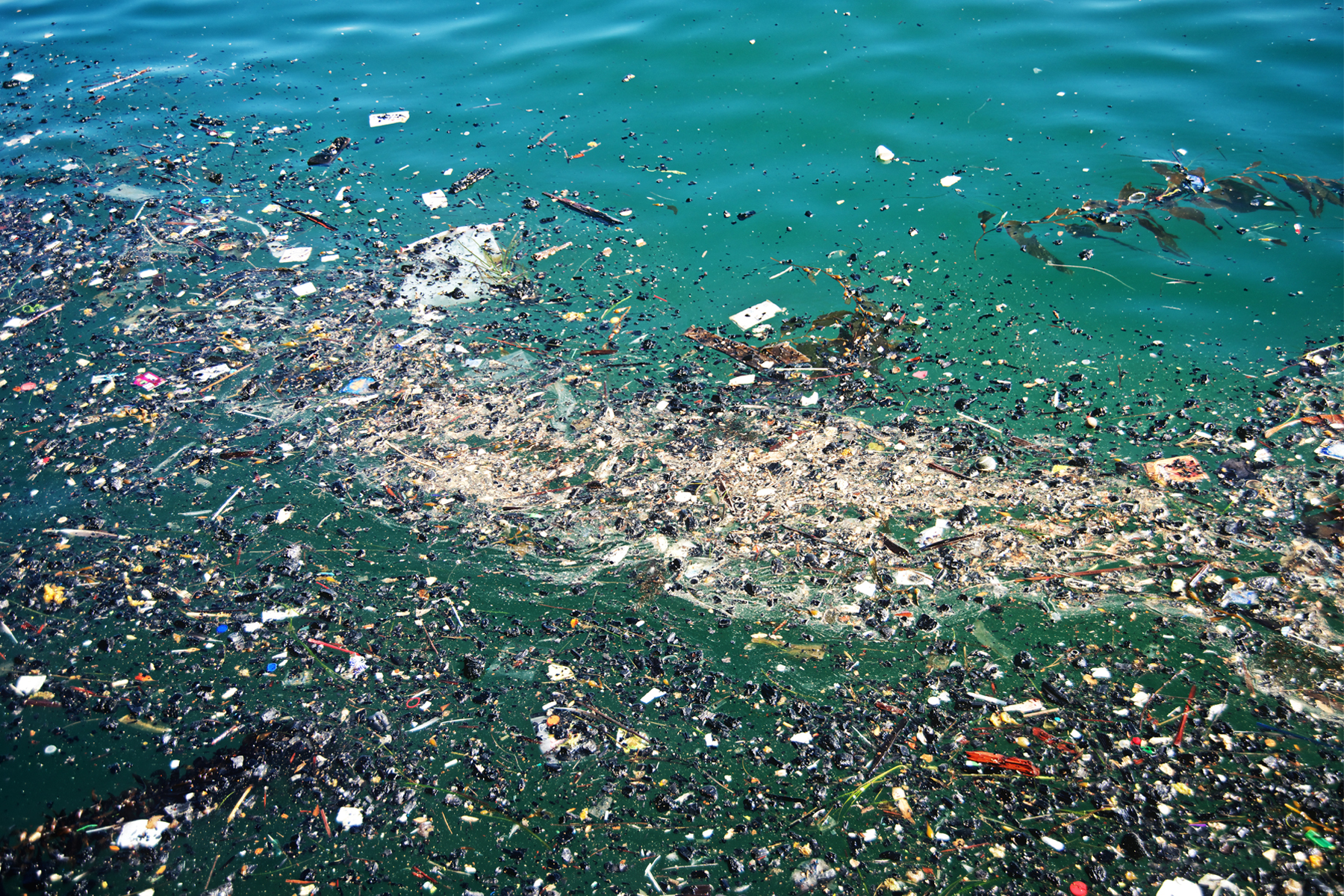 Some of the garbage in the Great Pacific Garbage Patch. Photo courtesy of How Stuff Works.